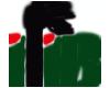 IFIB Logo